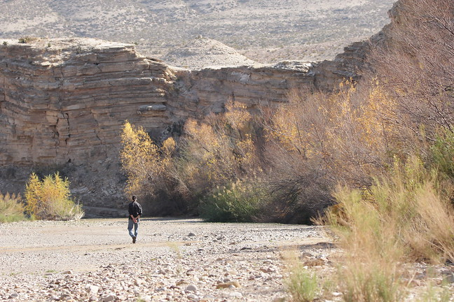 Birding the Dry River Bed